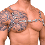 Chain & Sleeve H Style Harness 1