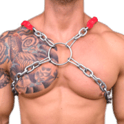 Chain & Sleeve X Style Harness 1