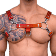 Leather H Style Harness 1