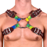 Leather & Rainbow X Style Harness 1