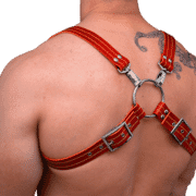 Leather Two Tone 8 Style Harness 1