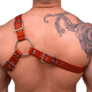 Leather Two Tone Y Style Harness 1