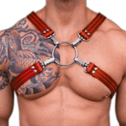 Leather X Style Harness 1