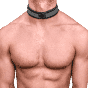 Neoprene Pup Collar 1