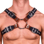 Rubber & Solid PVC X Style Harness 1