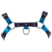 Rubber & Tinted PVC H Style Harness with Blue Tinted PVC 1