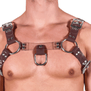 Solid PVC & Clear PVC H Style Harness 1