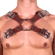 Solid PVC & Clear PVC X Style Harness 1