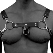 Solid PVC H Style Harness 1