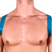 Tinted PVC 8 Style Harness with Blue Tinted PVC 1