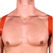 Tinted PVC 8 Style Harness with Red Tinted PVC 1